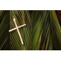 Palm Sunday Help